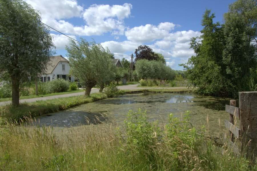 Camperplaatsen in gemeente Bodegraven-Reeuwijk worden vervangen